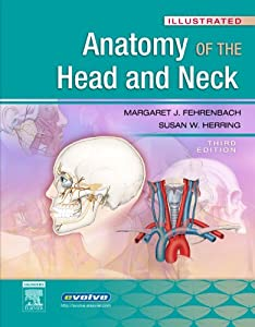 Head and neck anatomy textbook