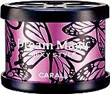 オカモト産業 車用 芳香剤 ドリームマジック缶 置き型 プラチナシャワー 47g 1678