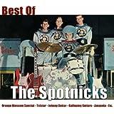 Best of the Spotnicks