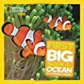 Little Kids First Big Book Of The Ocean (National Geographic Little Kids)