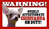 Chihuahua Short Haired Gift - High Gloss Plastic Warning Sign 8