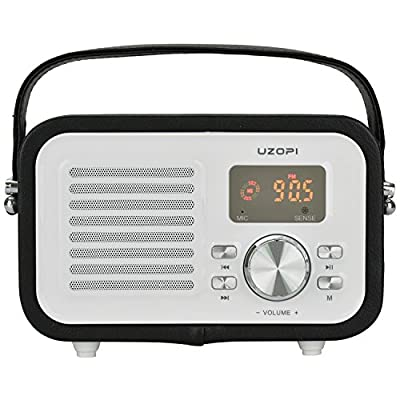 Portable FM Radio Bluetooth Speaker, UZOPI 5W Surround Sound Outdoor Wireless Boombox Speakers with Enhanced Bass, Built-In Mic, Support Micro TF SD Card, USB Input, AUX Line-In, etc from JIAMM
