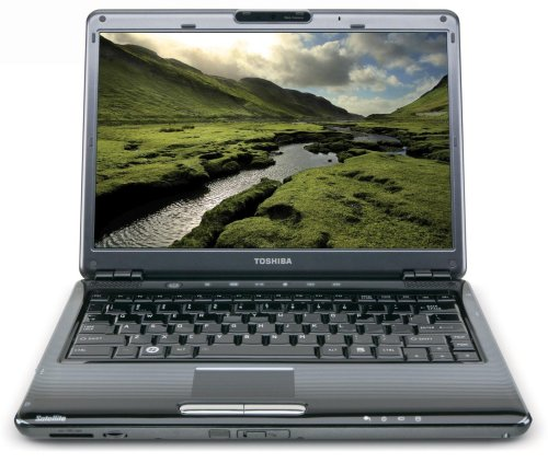 Toshiba Satellite U405-S2918 13.3-Inch Laptop
