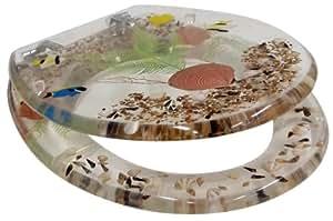 Schläfer 4644108 Abisse Abattant WC Polyrésine Motif coquillages (Import Allemagne)