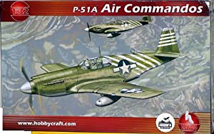 Hobbycraft Models 1/32 P-51A Mustang Air Commando