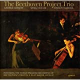 Beethoven Project Trio