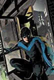 Nightwing: The Lost Year
