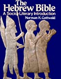The Hebrew Bible--A Socio-Literary Introduction