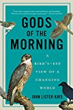 Gods of the Morning - A Bird's-Eye View of a Changing World John Lister-kaye