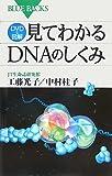 DVD&図解見てわかるDNAのしくみ (ブルーバックス 1582)