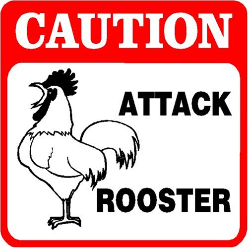 Caution - Attack Rooster Sign