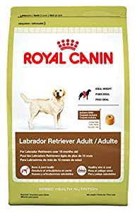 Royal Canin Labrador Retriever Dry Dog Food, 30-Pound Bag