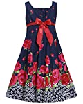 Girls 7-16 Navy-Blue Red Bow Front Floral Border Print Fit-N-Flare Dress