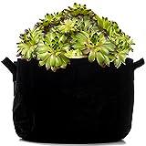Milliard Durable Aeration Plant Grow Bag/Fabric Plant Bag with Sturdy Handles - 10 Gallon
