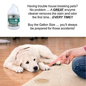 BUBBAS Enzyme Cleaner & Odor Eliminator For Pet Stain In Carpeting: Gallon Size Enzymatic Carpet Stain Remover To Remove Dog & Cat Urine-Odors-Old Stains-Feces & Vomit