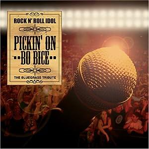 Rock N Roll Idol: Pickin on Bo Bice