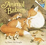 img - for Animal Babies[ ANIMAL BABIES ] by McNaught, Harry (Author) Jul-12-77[ Paperback ] book / textbook / text book