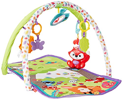 Fisher-Price 3-in-1