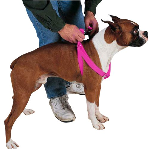 Guardian Gear Nylon 2-Step Dog Harness, 25-40-Inch, Flamingo Pink