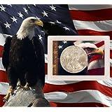 2014 American Silver Eagle Dollar BU (Brilliant Uncirculated) In American Eagle And Flag Holder