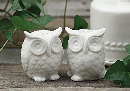 Ceramic Owls Salt & Pepper Shaker