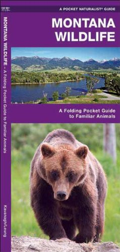Montana Wildlife: A Folding Pocket Guide to Familiar Animals (Pocket Naturalist Guide Series)