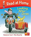 Read at Home: Looking After Gran, Level 4a