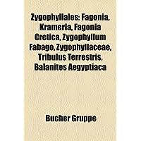 Zygophyllales: Fagonia, Krameria, Fagonia Cretica, Zygophyllum Fabago, Zygophyllaceae, Tribulus Terrestris, Balanites...