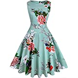 OWIN Women's Vintage 1950's Floral Spring Garden Party Dress Party Cocktail Dress (XL, Ice Blue)
