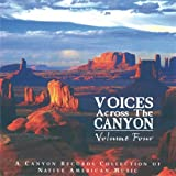 echange, troc Compilation - Voices Across The Canyon Vol 4