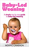 Baby-Led Weaning: A simple step by step guide to baby-led weaning