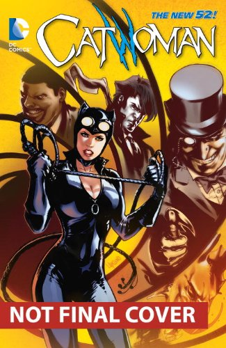 Catwoman Vol 4 The 52 Catwoman Graphic Novels at Gotham City Store