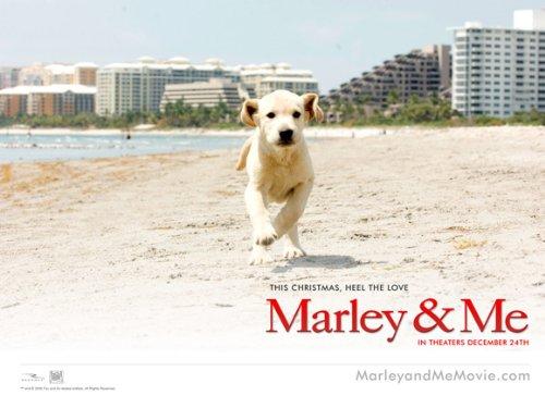 marley and me poster. Marley and Me Poster Movie B 11 x 17 In - 28cm x 44cm Jennifer Aniston Owen