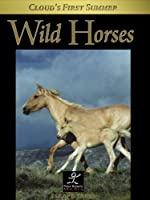 Wild Horses: Cloud's First Summer