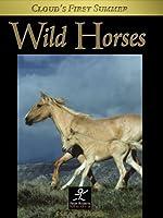 Wild Horses: Cloud's First Summer