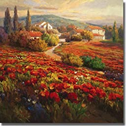 Poppy Fields by Roberto Lombardi Premium Stretched Canvas (Ready to Hang)