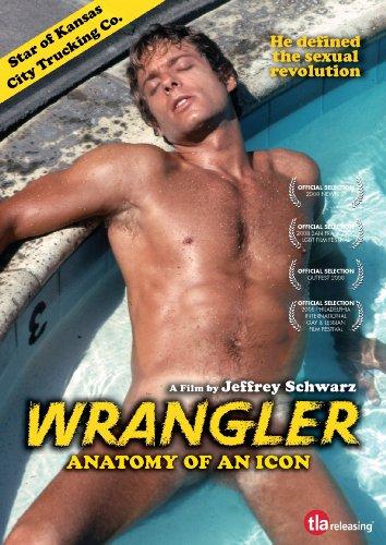 Wrangler anatomy of an icon