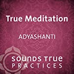 True Meditation: Allowing Everything to Be as It Is |  Adyashanti