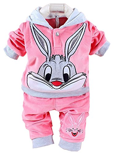 Eden Babe New baby clothing set 2015 Spring/Autumn baby's set cartoon rabbit boys girls clothes twinse suits hoodie pant children clothing(Pink,10-12 Months)