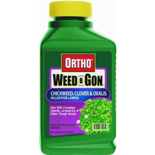 The Scotts Co. 0394560 Weed-B-Gon Chickweed, Clover, & Oxalis Killer 16 oz