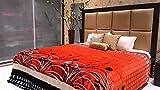 Tima Velvet Double Comforter- Red