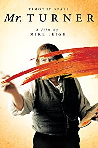 MR. TURNER is slow, long, sometimes beautiful and it's on DVD…