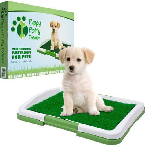 Pawt Puppy Potty Trainer - The Indoor Restroom For Pets (80-St403) - front-447063