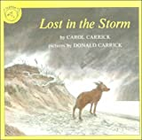 Lost in the Storm (0808591010) by Carrick, Carol