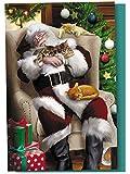 "Tree-Free Greetings Christmas Cards and Envelopes, Set of 12, 4 x 6"", Cat Nap Santa (FS93513)"