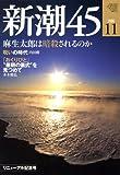 新潮45 2008年 11月号 [雑誌]