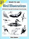 Ready-to-Use Bird Illustrations: 98 Different Copyright-Free Designs Printed One Side (Clip Art Series)