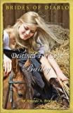 img - for Brides Of Diablo: Destined For Love - Bailey book / textbook / text book