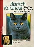 Britisch Kurzhaar & Co.