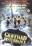 echange, troc Graveyard Disturbance (The Director's Cut) [Import anglais]